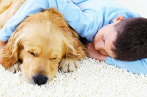 Cute boy sleeping together with his lovely dog.